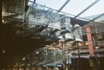 aquapix - bird market