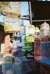 aquapix - colorfull cages
